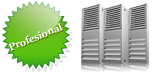 web hosting Chile profesional
